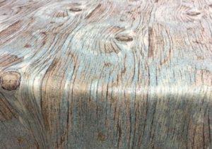 Cypress-aqua-2